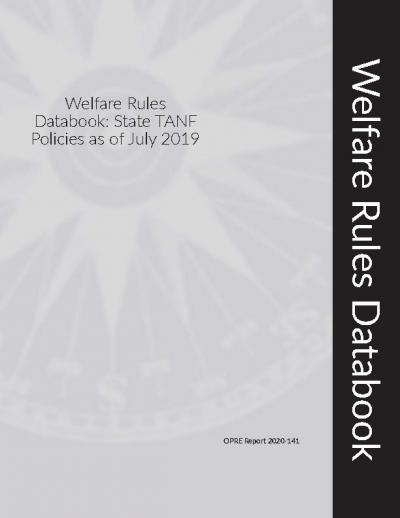 Cover of 2019 Welfare Rules Databook