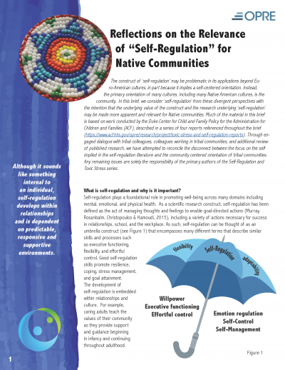 "Reflections on the Relevance of ""Self-Regulation"" for Native Communities Cover"