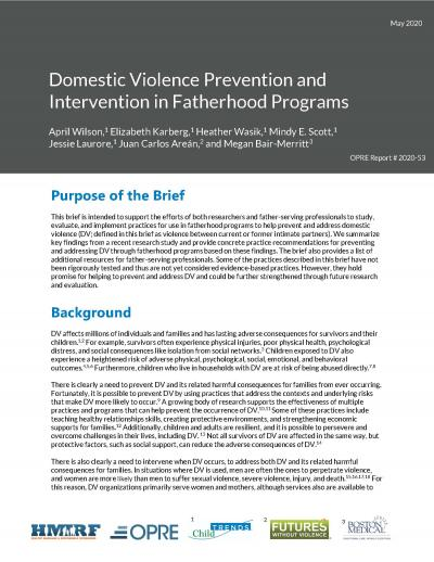 This is the cover of Domestic Violence Prevention and Intervention in Fatherhood Programs